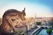 picture of gargoyles  - The Gargoyle of Notre Dame looking out over Paris - JPG