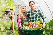 stock photo of aubergines  - Young couple standing in their green house presenting vegetables in a basket - JPG