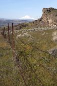 Vertical Composition Barbed Fence Rocky Ridge Sage Brush Mount Hood