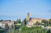 San Francesco, A Church In Siena, Tuscany, Italy.