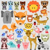Big set of various cute animals
