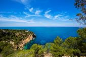 cala Vedella Vadella Ibiza island with Mediterranean sea in Balearic Islands