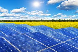 stock photo of rape-field  - Creative solar power generation technology - JPG