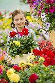 Planting, garden flowers - Lovely girl holding flowers in garden center