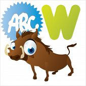 W is for Warthog