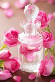 perfume bottle and pink rose flowers. spa aromatherapy