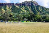 Cricket under Diamond Head