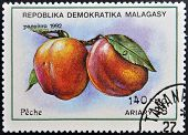 stamp printed in Madagascar shows Peaches Prunus Persica Fruit