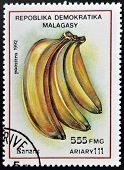 stamp printed in Madagascar shows Bananas Musa Fruit