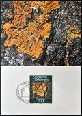 stamp printed in Liechtenstein dedicated to mosses and lichens shows xanthoria parietina