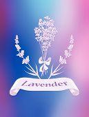 Lavender product label