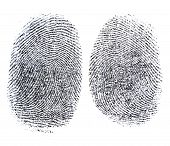 stock photo of fingerprint  - A Fingerprint photographed on white background - JPG
