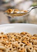 image of cereal bowl  - Bowl of cheerios being dipped into with a big spoon - JPG