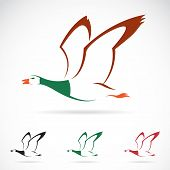 stock photo of fowl  - Vector image of an flying wild duck on white background - JPG