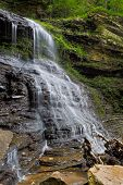 Cathedral Falls At Gauley Bridge