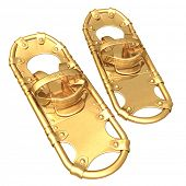 Gilded Snow Shoes