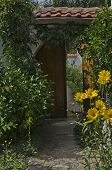 Door with flower for entrance in yard