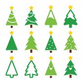 Christmas green tree with star vector icons set
