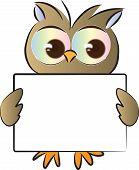 owl holding a blank card