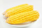 stock photo of corn-silk  - The close up grains of ripe corn
