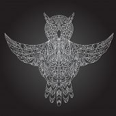 Ornamental hand-drawn owl