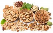 stock photo of mixed nut  - View from above of varieties of nuts - JPG