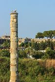 picture of artemis  - Ruins of the Temple of Artemis - JPG