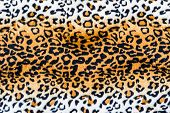 The Texture Of Leopard Leather
