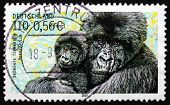 Postage Stamp Germany 2001 Mountain Gorilla