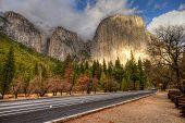 Road Through Yosemite Valley