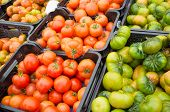 Crates Of Tomatoes