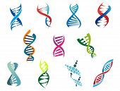 image of gene  - Colorful vector DNA molecules and symbols showing the coiled helix structure on a white background - JPG
