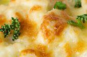 Cauliflower Cheese With Parsley Close Up
