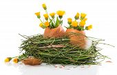 Easter Nest With Spring Flowers
