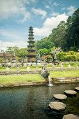 picture of fountain grass  - Tirtagangga water palace with fountains  and ponds on Bali - JPG