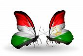Two Butterflies With Flags On Wings As Symbol Of Relations Hungary And Tajikistan