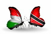 Two Butterflies With Flags On Wings As Symbol Of Relations Hungary And Trinidad And Tobago