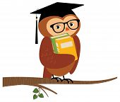 Academic Owl Holding A Book Sitting On A Branch