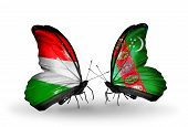 Two Butterflies With Flags On Wings As Symbol Of Relations Hungary And Turkmenistan