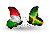 Two Butterflies With Flags On Wings As Symbol Of Relations Hungary And Jamaica