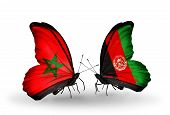 Two Butterflies With Flags On Wings As Symbol Of Relations Morocco And  Afghanistan