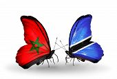 Two Butterflies With Flags On Wings As Symbol Of Relations Morocco And Botswana