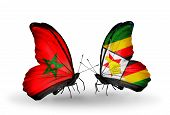 Two Butterflies With Flags On Wings As Symbol Of Relations Morocco And Zimbabwe