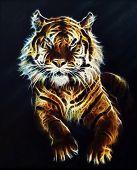 Tiger Fractal Beautiful Color Ornaments Background