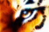 Tiger Eye Fractal Ornamental Background fractals