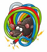 stock photo of rats  - Cartoon grey rat gnawing wires - JPG