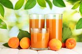 pic of apricot  - Glasses of apricot juice and fresh apricots on table on green background - JPG