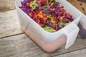 pic of red barn  - colorful juicer pulp after juicing raw vegetables  - JPG