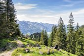 picture of bavaria  - Landscape on the mountain Breitenstein in the Alps in Bavaria Germany - JPG