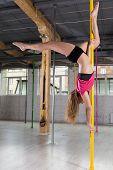 picture of pole dance  - Beauty sporty pole dancer dancing on pylon - JPG
